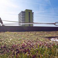 Horizontales Seilsicherungssystem ALTILIGNE bei VERTIC auf grünem Dach